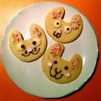 bunny biccies!